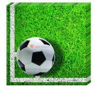 Салфетки Футбол зеленый газон